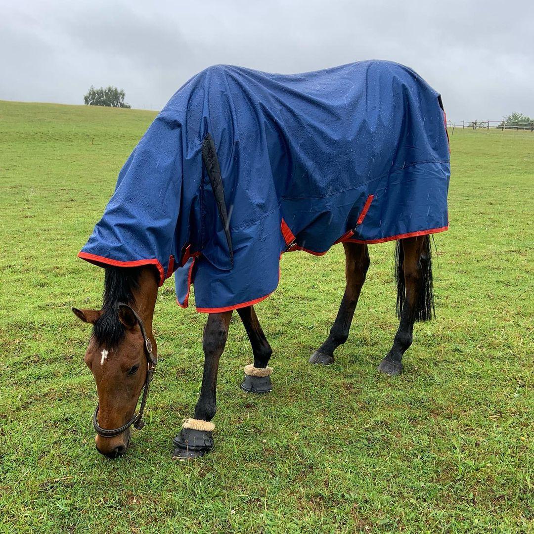 Regendichte Pferdedecke
